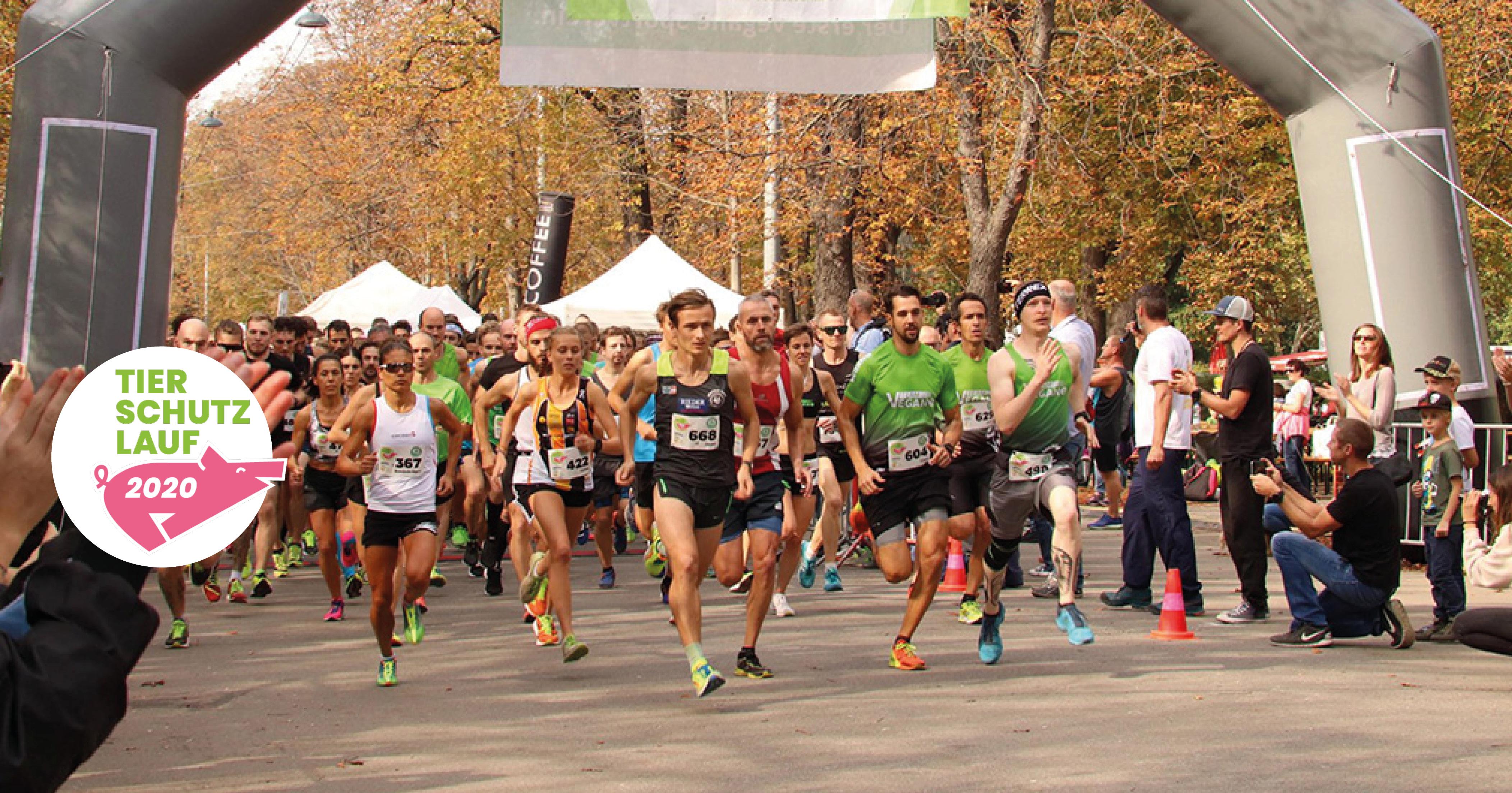 LäuferInnen beim Start des Tierschutzlaufs