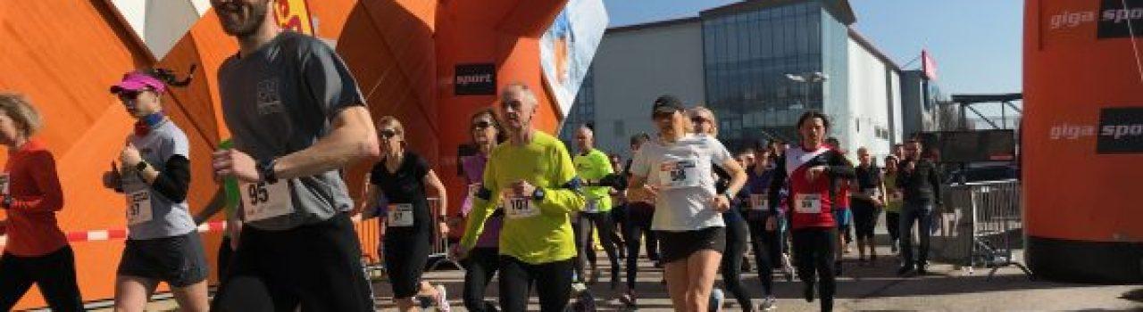 Läufer beim Start des Gigasportlauf Brunn am Gebirge