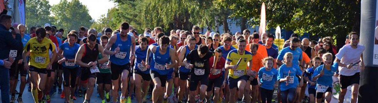 Läufer beim Start des Gerasdorfer Stadtlaufs
