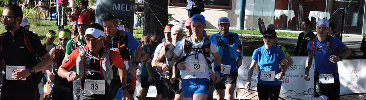 Läufer beim Start des Lindkogel Trails