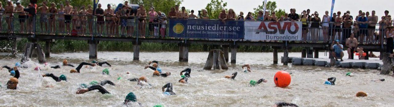 Schwimmer beim Start des Schwimmfestival Neusiedler See